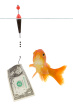 Catching_with_money